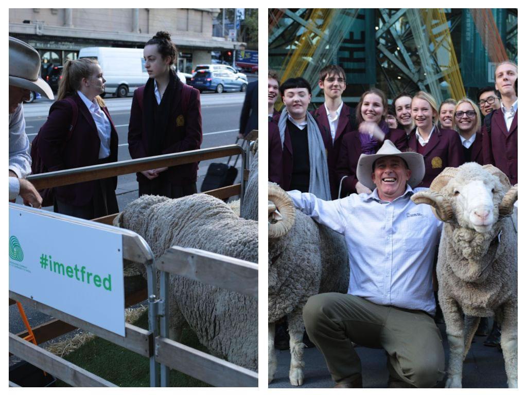 Wool Week Australia.001