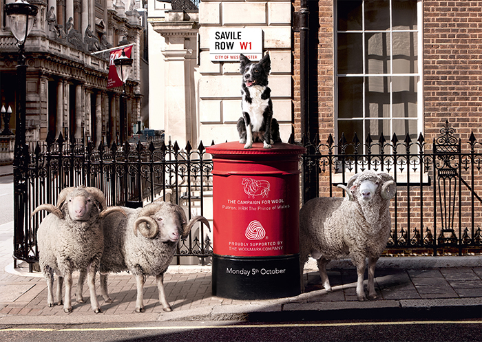 Savile Row – Sheep on the Row