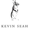 KEVIN SEAH LOGO